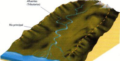 Cuenca hidrográfica: Elementos, funcionamiento, clasificación y Importancia