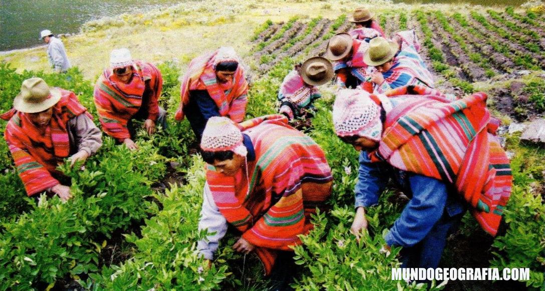 región quechua