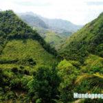 región rupa rupa