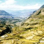 Región Suni: Clima, Relieve, Flora y Fauna