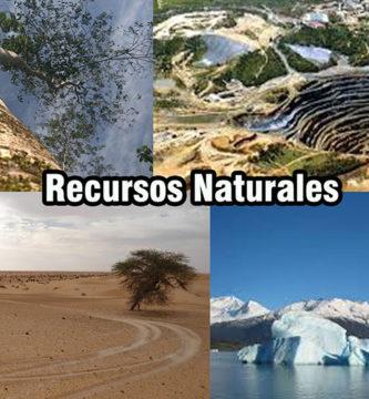 Recursos Naturales: Importancia, Características y Clasificación
