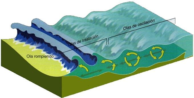 ¿ Que son las olas?